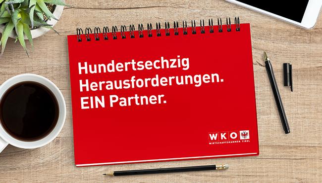 Handbuch des Unternehmens